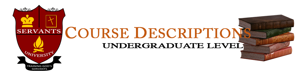 what does undergraduate application mean